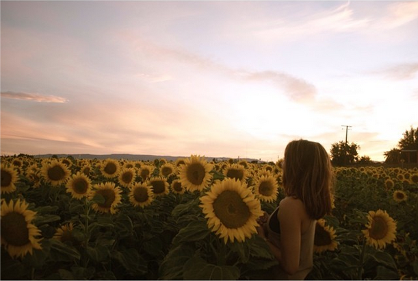 Kathleen looking for answers in a sunflower field.