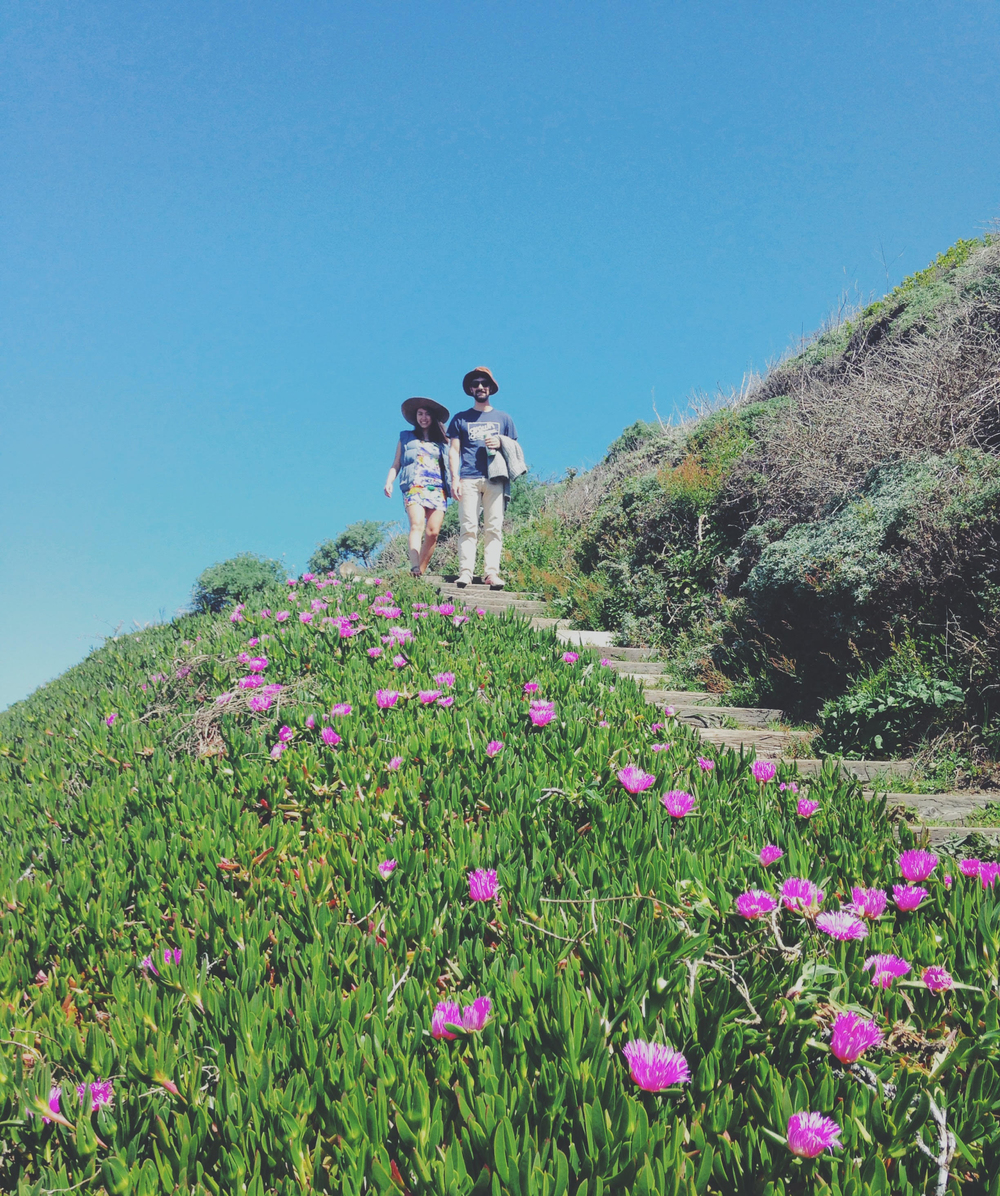 California Ice Plant Beach Path | Sonoma Coast | GirlGoesRad