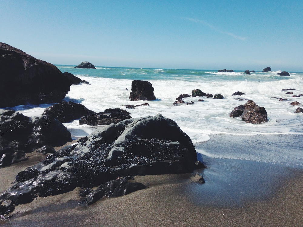 Sonoma Coast | Bodega Bay | Sonoma County, California