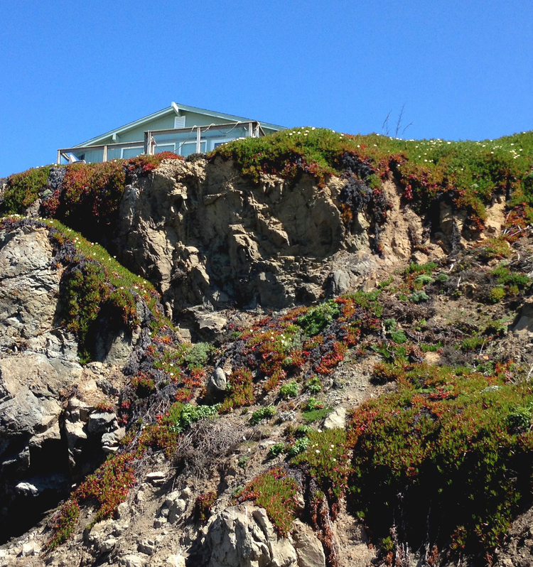 house with a view | pacific oceann sonoma coast | girl goes rad