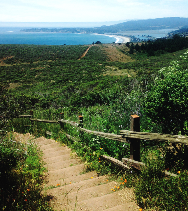 Dipsea Trail from Stinson Beach California to Mt Tam State Park