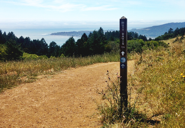 Matt Davis Trail Mt Tamalpais State Park Marin County California