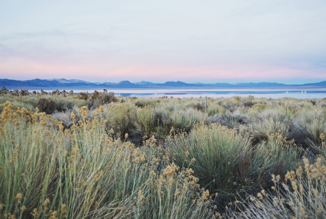 Mono Lake Sunset, Northern California