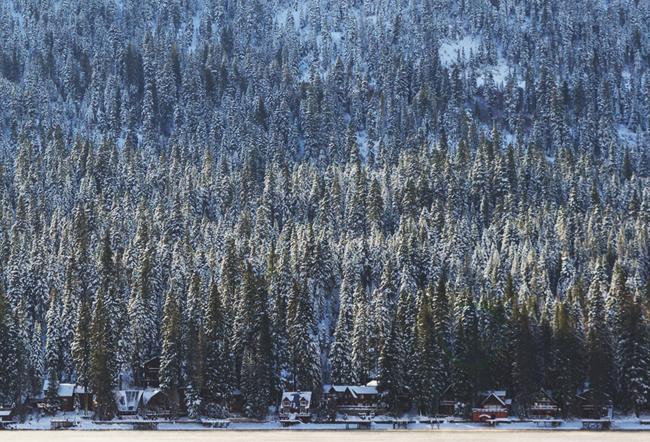 Donner Lake Cabins, California