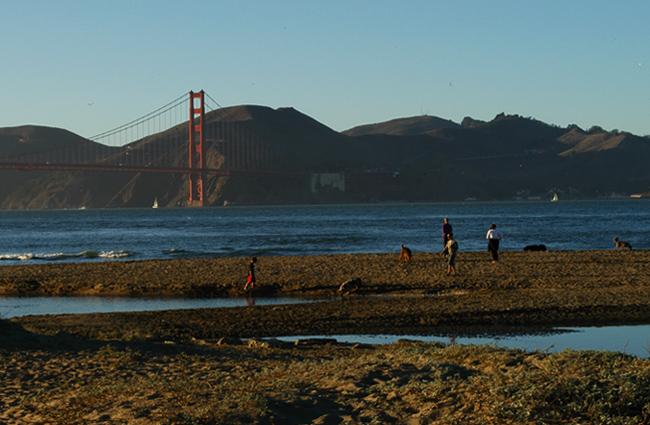 Golden Gate Bridge SF Beach Walk