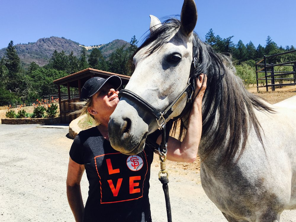 Relax & relate to horses through grooming. - Learn about how horses experience the world.