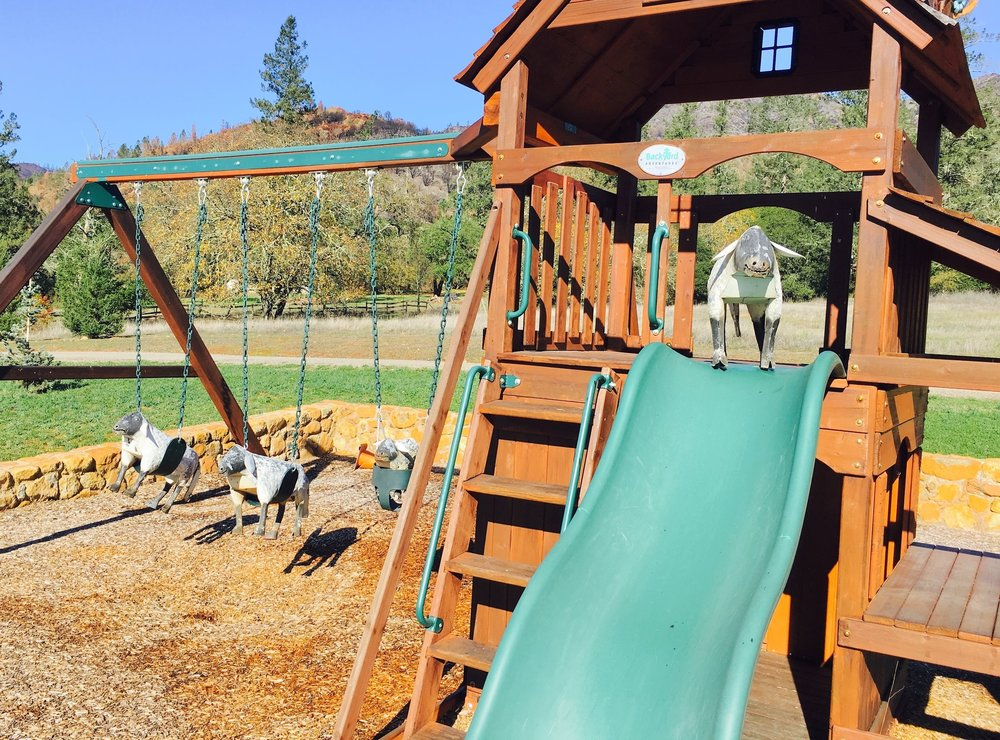 Explore and play! - Explore the gardens, olive grove, and playground at the farm.