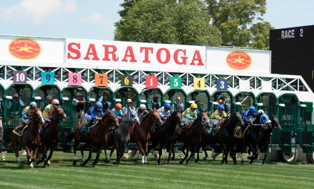 """Annnnd They're Off!"" Thoroughbreds breaking out of the gates at Saratoga"