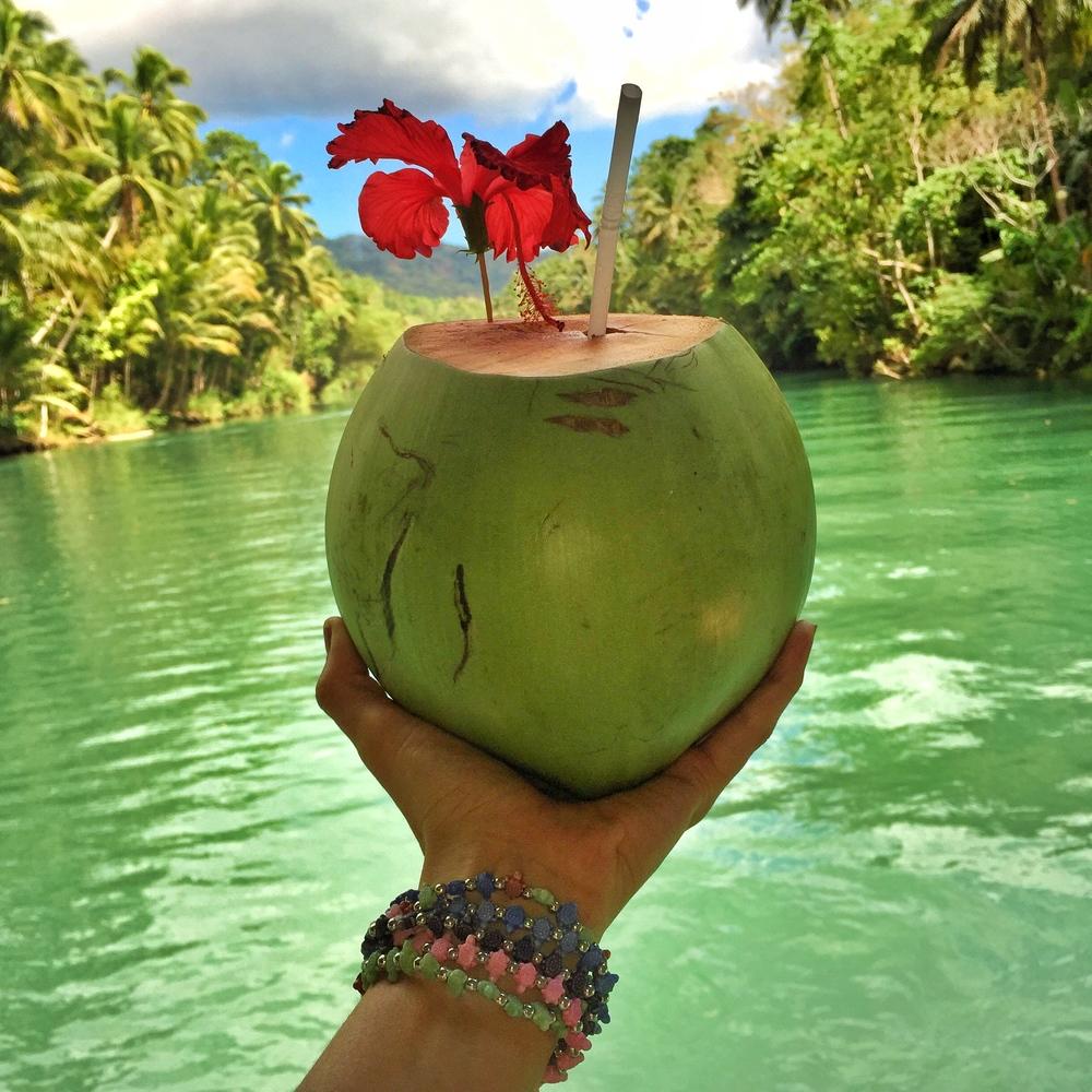 coconut bohol philippines