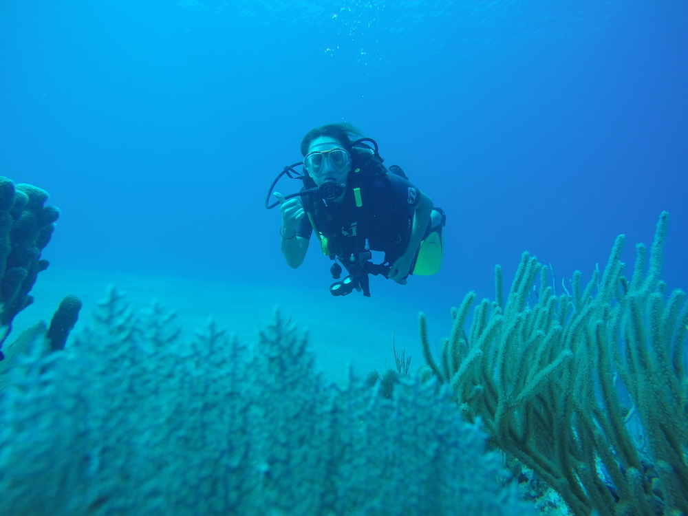 scuba-dive-dominican-republic