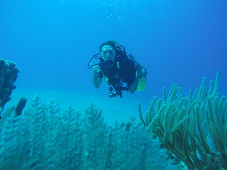scuba-dive-dominican-republic