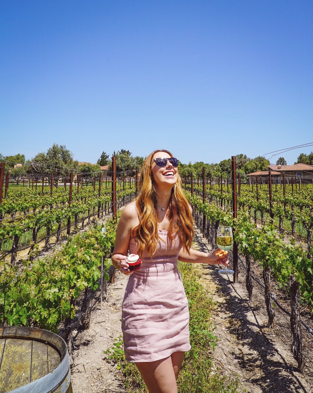 wine and cupcake tour vincent vineyards santa barbara