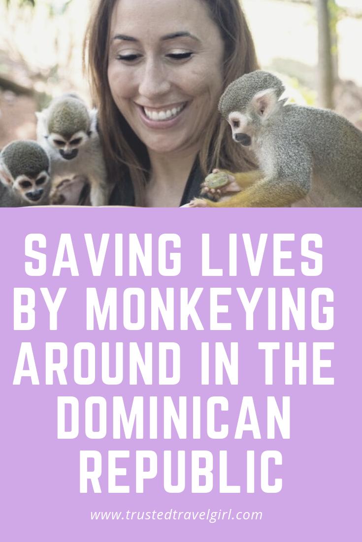 monkeys dominican republic
