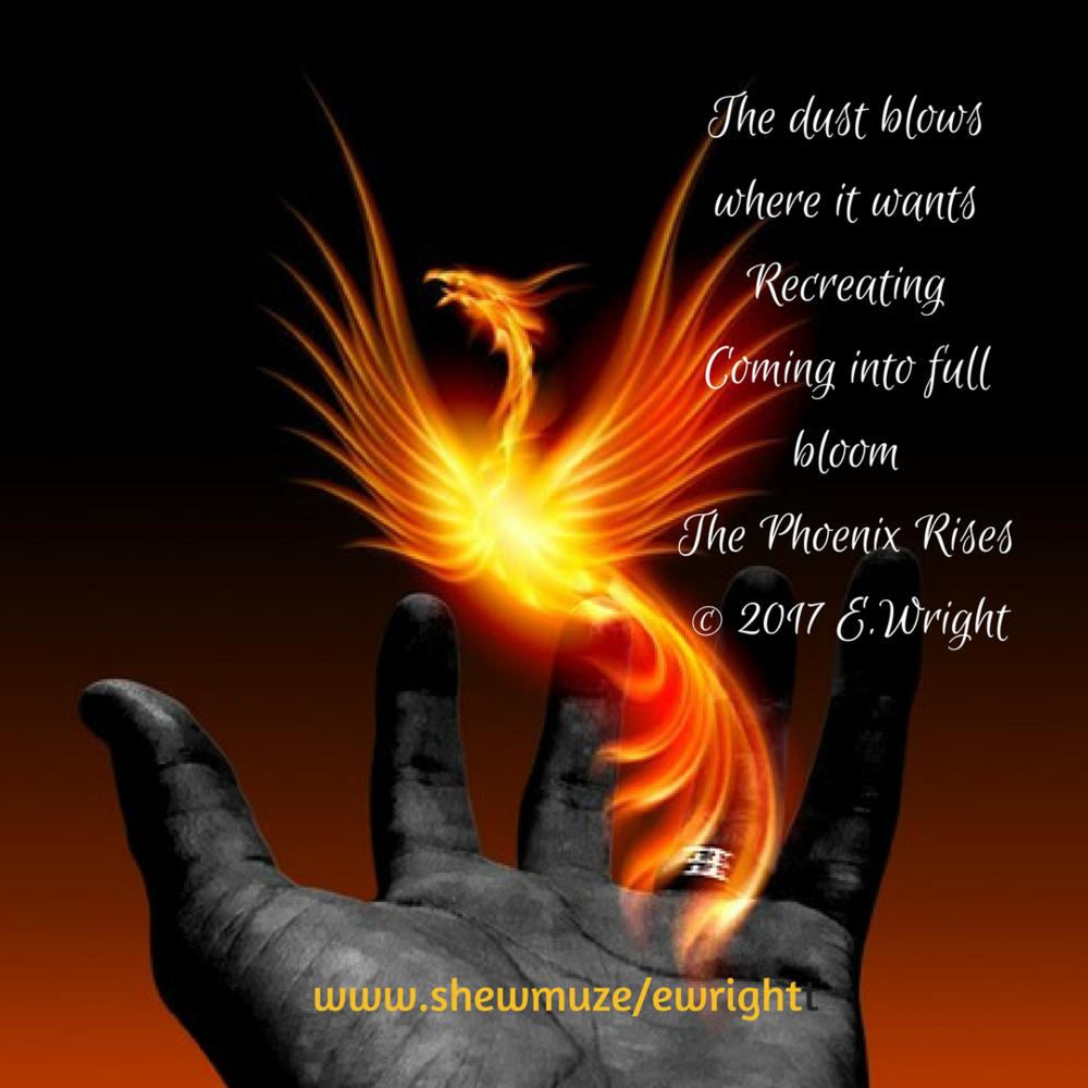 The Phoenix Rises_EWright.png