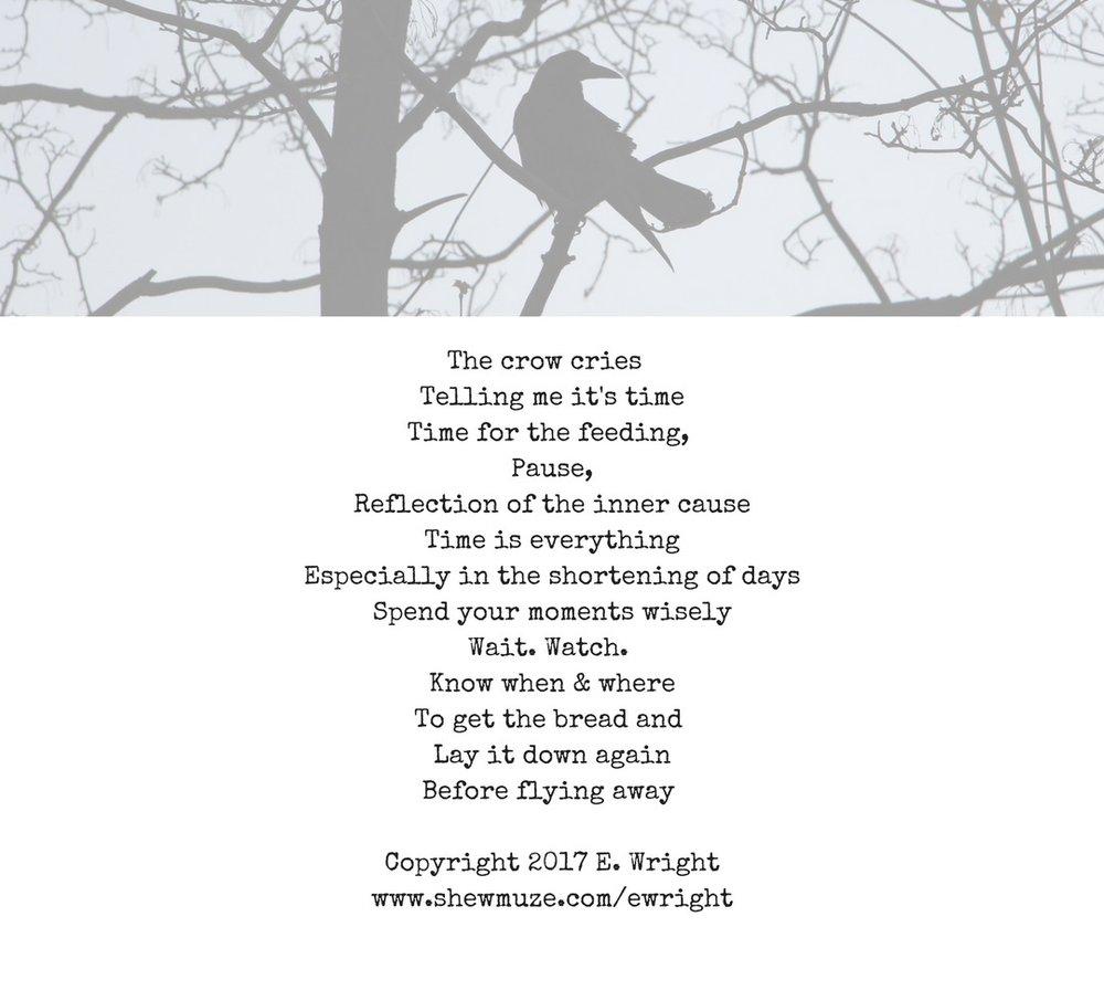 The Crow Cries_EWright.jpg