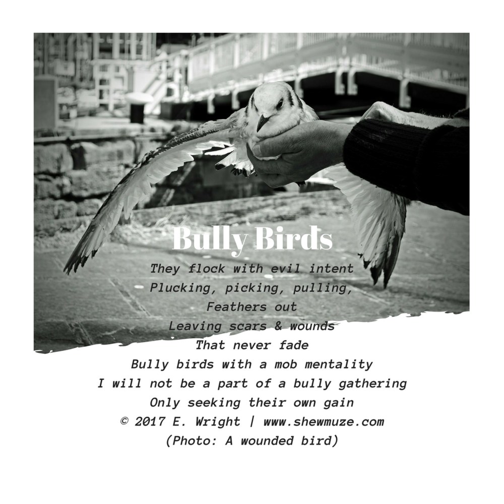 Bully Birds    © 2017 E. Wright