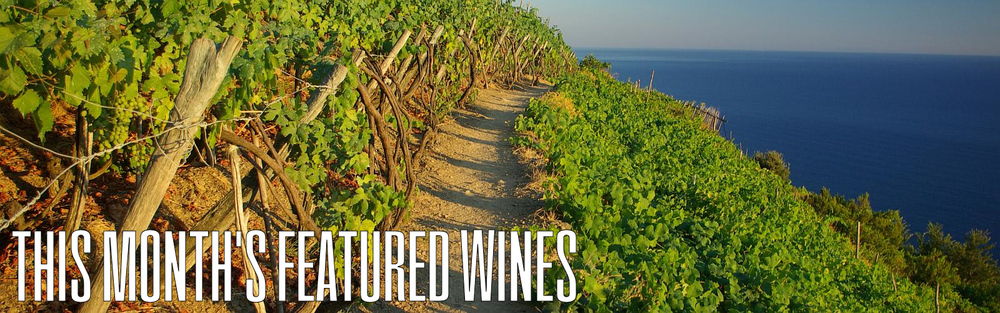 CLICK HERE TO SEE WHAT WINES ARE FEATURED IN THE TOUR OF ITALY FOR THE MARCH WINE CLUB FEATURE!
