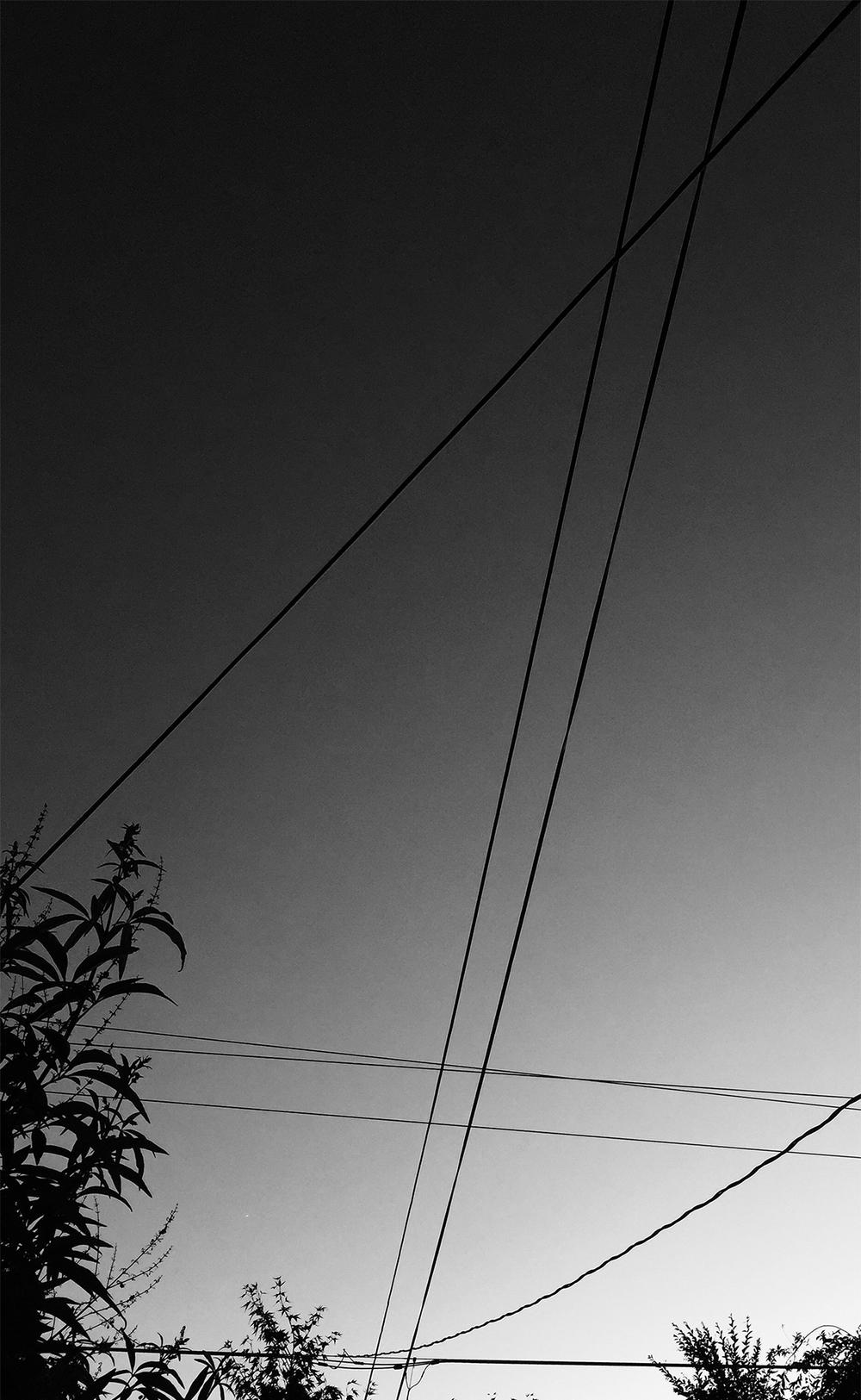 Wires01.jpg