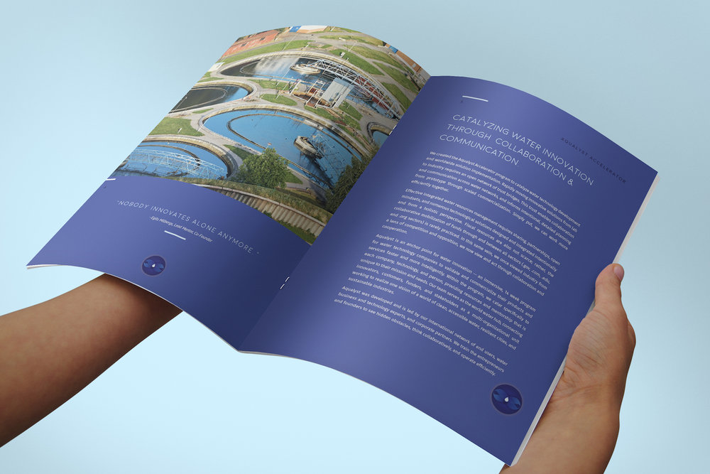 PureBlue Aqualyst Accelerator Brochure Design