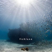 Fish Lane - Too Early For Fish