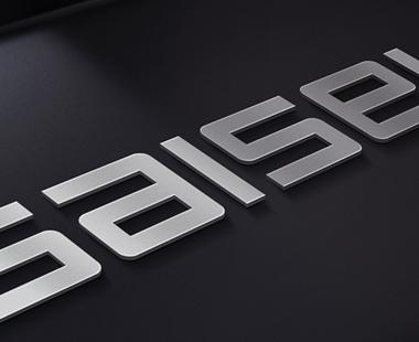 SAISEI  Branding