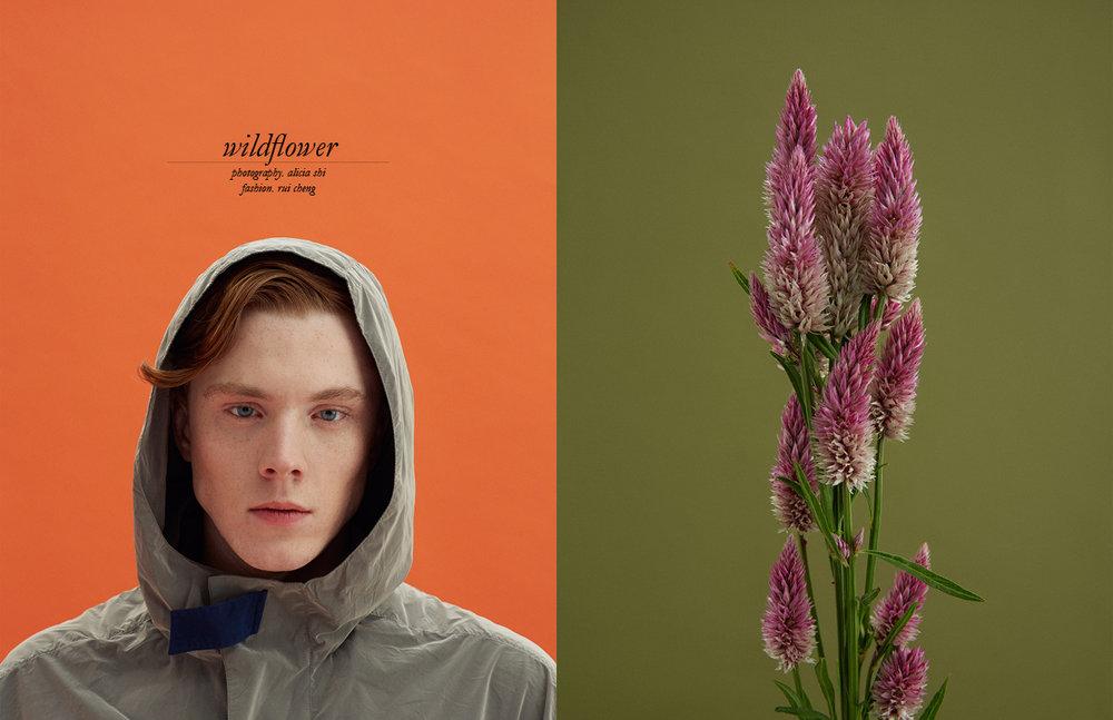 Schon_Magazine_wildflower.jpg
