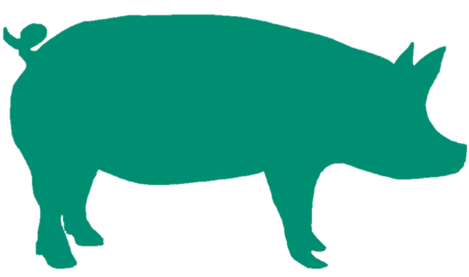 Green Pig.png