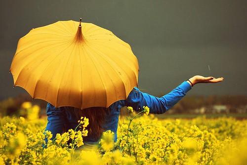 Mustard, Navy, Teal, Linen Inspiration 1