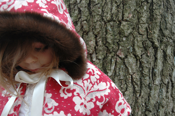 Little Red Raven Hoodie5