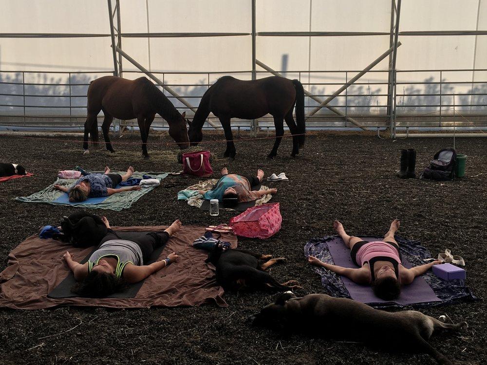 Healing Spirit Horse Farm, Buckfield, ME