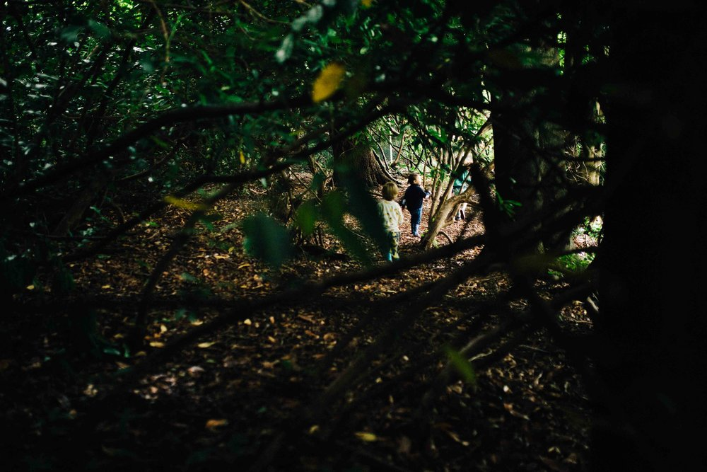 Boys running in the woods during family photos at Claremont Landscape Gardens