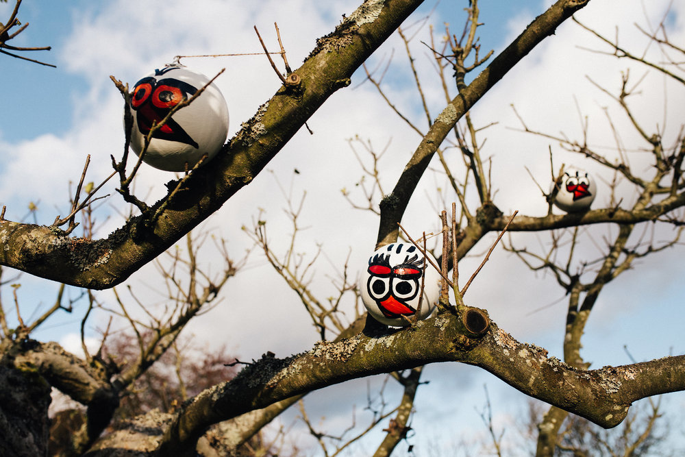 Partridges in a tree at Chartwell House's Christmas trail