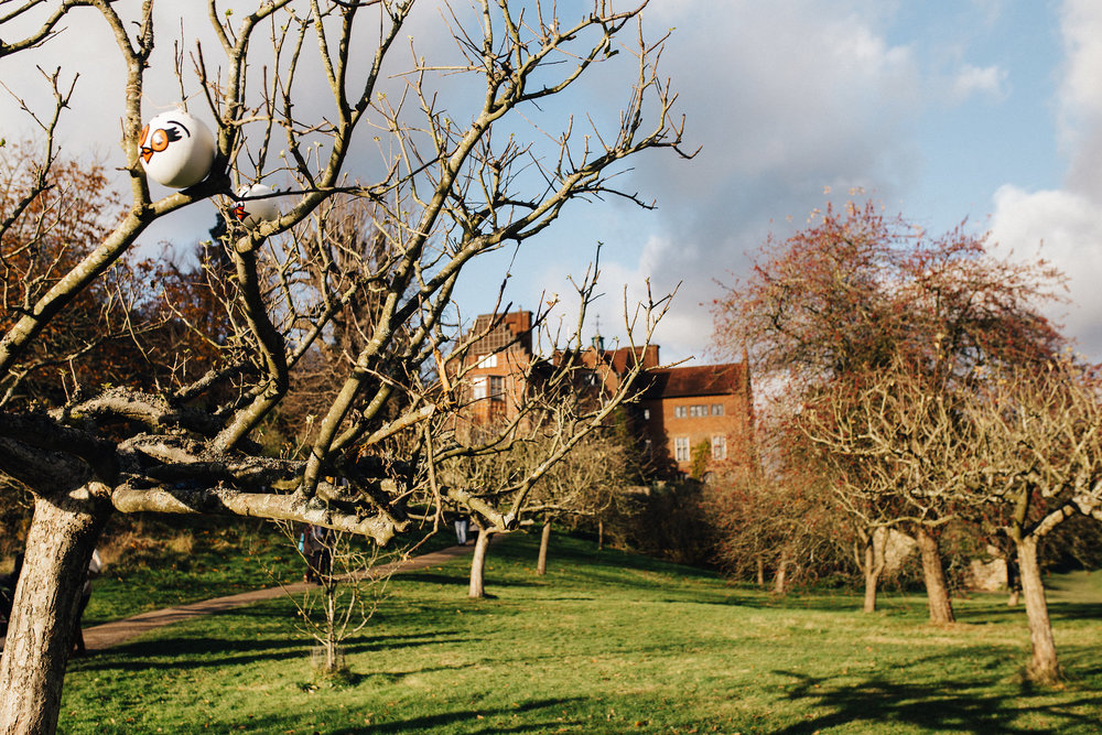 Chartwell House with trees during Christmas trail