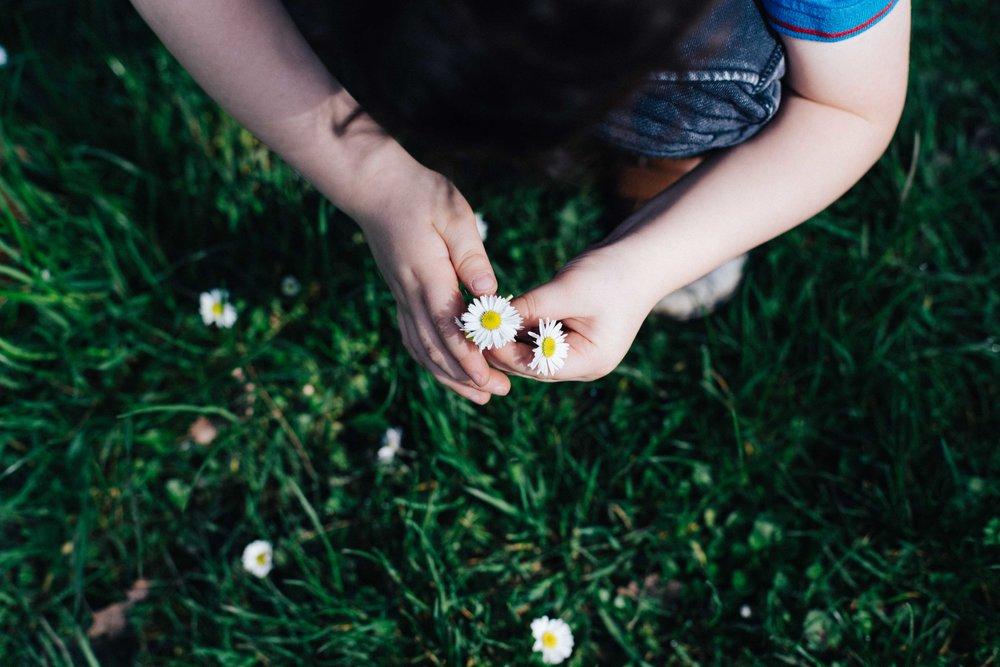 Boy picking flowers