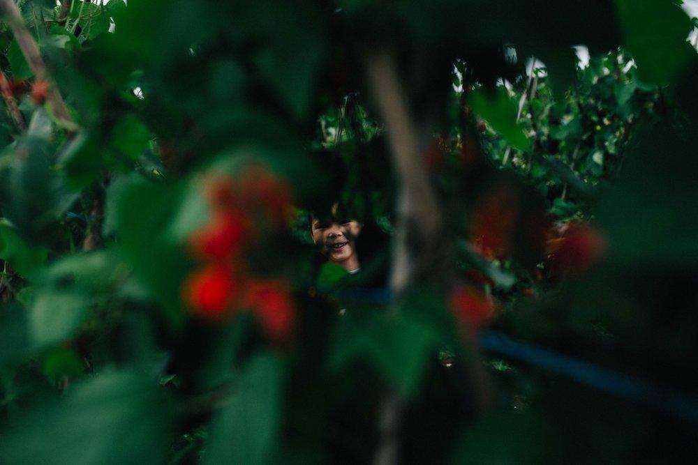 Boy hiding behind bush