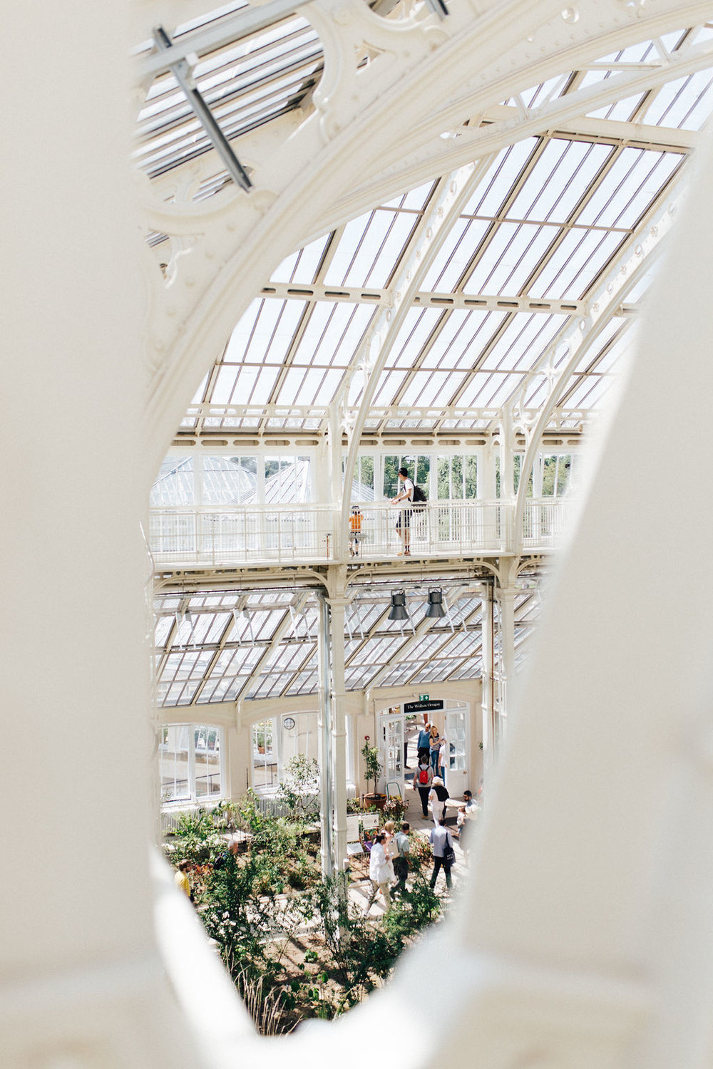 Inside the Temperate House in Kew Gardens, London