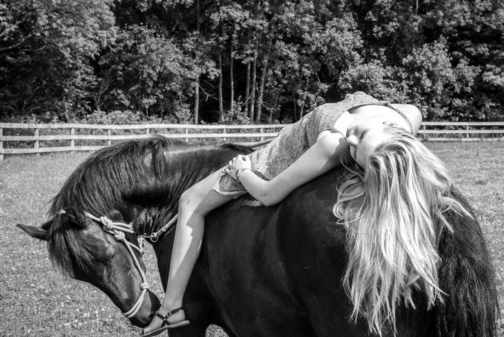 horsesite.jpg