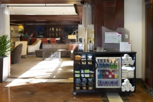 INTERCONTINENTAL HOTEL GROUP  CROWNE PLAZA HOTELS RUN STATION KIOSKS