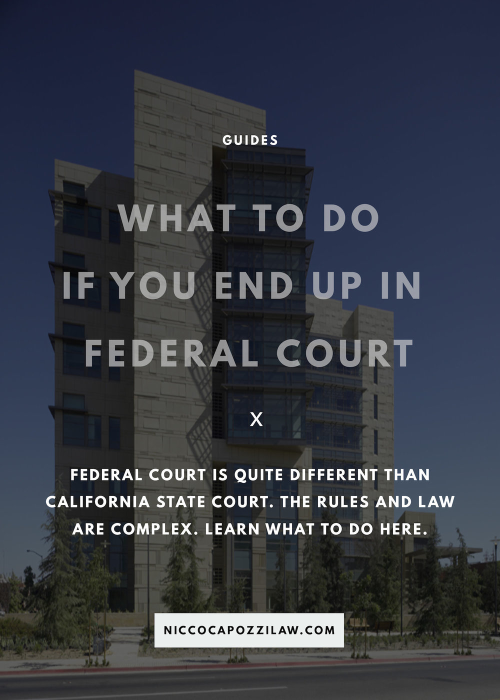what to do if you end up in federal court.jpg