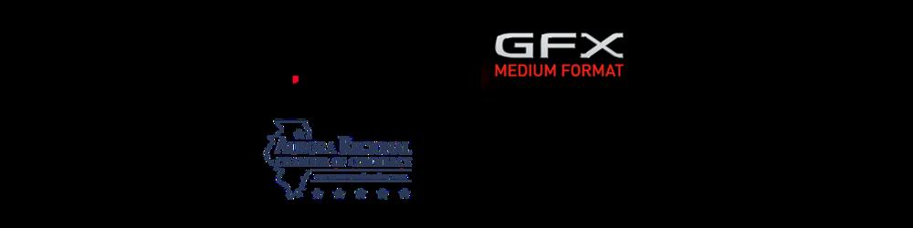 webpage memberlogov3.png