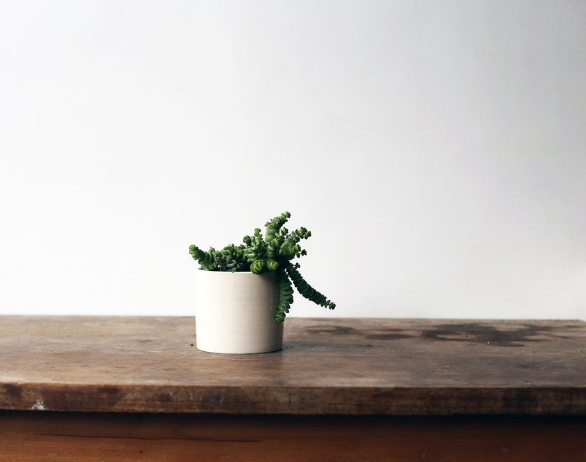 Medium_cream_planter+w-plant.JPG