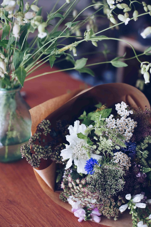 *Botany wild flowers59.jpg
