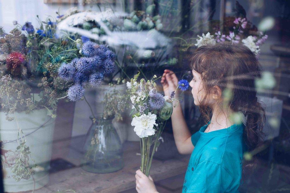 Botany wild flowers22.jpg