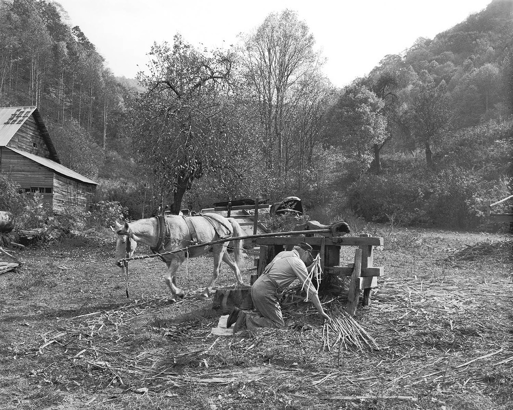 Molasses making horse powered mill Appalachian photographer Tim Barnwell