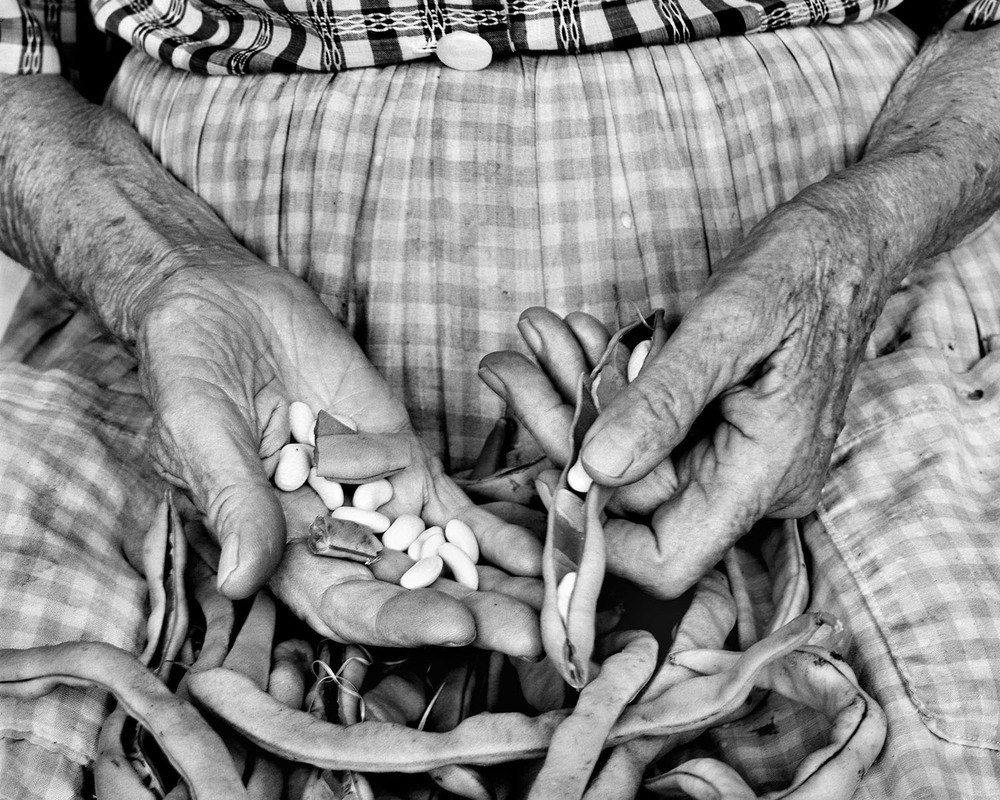 Shelling beans hands Appalachian portrait Tim Barnwell photographer