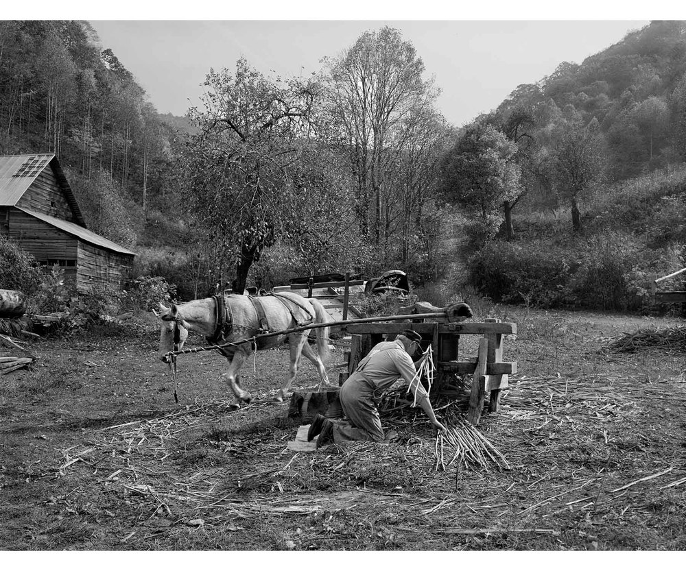 Appalachia Appalachian molasses making horse powered mill Tim Barnwell photographer