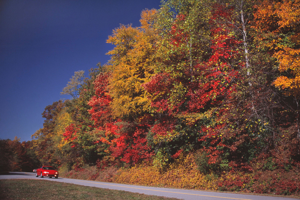 Parkway fall color road #1.jpg