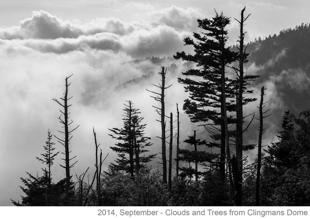 September 2014 POM-Barnwell_2387-Digital.jpg