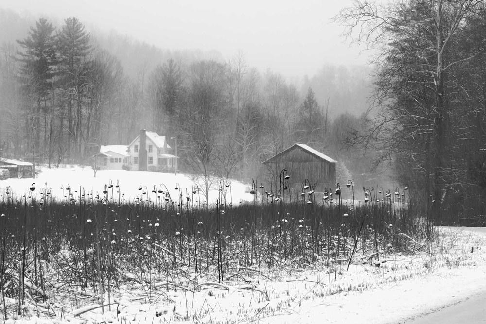February 2012 POM B421 4x6.jpg