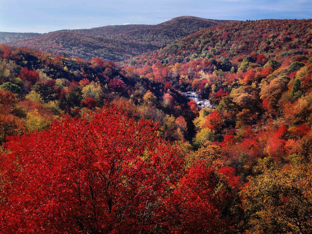 Fall color Graveyard Fields-Print Master Updated slideshow.jpg